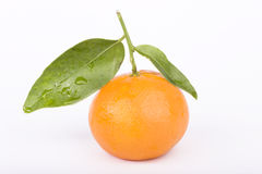 Tangerine isolated on white. Tangerine closeup isolated on white Royalty Free Stock Photography