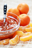 Tangerine jam Royalty Free Stock Images