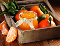 Tangerine jam in glass jar. With fruit around Stock Image