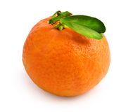 Tangerine with leaf Stock Photography