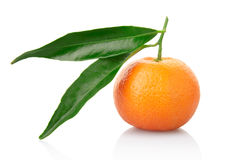 Tangerine with leaf. Tangerine and leaves isolated on white, clipping path included Stock Images