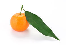 Tangerine with leaf Royalty Free Stock Photos