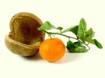 Tangerine with leaf Stock Photos