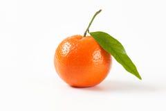 Tangerine with leaf Stock Photo