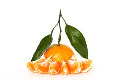 Tangerine with leafs Royalty Free Stock Photo