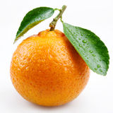 Tangerine with leaves Royalty Free Stock Image