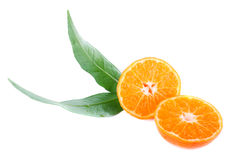 Tangerine with leaves Stock Photo