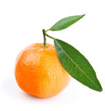 Tangerine with leaves isolated on white Royalty Free Stock Photography