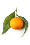 Tangerine with leaves Royalty Free Stock Images