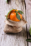 Tangerine with leaves Stock Images