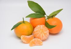 Tangerine. With leaves Stock Image