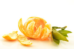 Tangerine with leaves on a white background Royalty Free Stock Photo