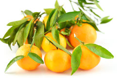Tangerine with leaves on a white background Royalty Free Stock Photos