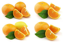 Tangerine and lemon Stock Photos