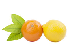 Tangerine and lemon Royalty Free Stock Images