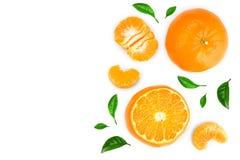 Tangerine lub mandarynka odizolowywający na białym tle z kopii przestrzenią dla twój teksta Odgórny widok Mieszkanie nieatutowy zdjęcie royalty free