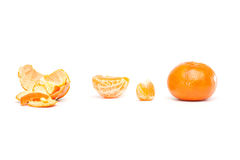Tangerine, Mandarin Royalty Free Stock Photos