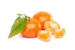 Tangerine Mandarin Royaltyfria Bilder