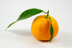 Tangerine, mandarin, clementine isolated on white Royalty Free Stock Images