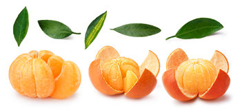 Tangerine,mandarin,clementine,leaves set Royalty Free Stock Image