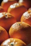 Tangerine, mandarin, clementine or orange fruit background Stock Image
