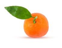 Tangerine or mandarin fruit with green leaf Royalty Free Stock Photos
