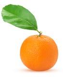 Tangerine or mandarin fruit with green leaf Stock Photos