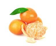 Tangerine or Mandarin Fruit Royalty Free Stock Photo