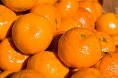 Tangerine mandarine. Pile of the mandarine at the sunlight macro stock image