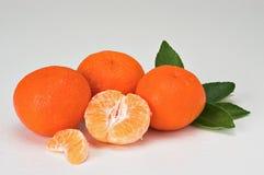Tangerine Stock Photography