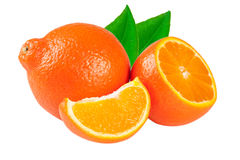 Tangerine or Mineola with leaf isolated on white background Royalty Free Stock Photo