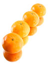 Tangerine on Mirror Surface. Four tangerine on Mirror Surface Royalty Free Stock Photos
