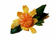 Tangerine mit dem grünen Blatt lokalisiert auf weißem Hintergrund lizenzfreie stockfotos
