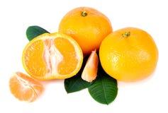 Tangerine mit grünen Blättern Stockbilder