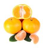 Tangerine mit grünen Blättern Lizenzfreie Stockfotos