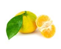 Tangerine na biały tle obraz stock