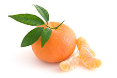 Tangerine Orange Stock Photography