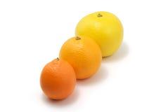 Tangerine, orange, grapefruit. Isolated tangerine, orange, grapefruit on white background stock photography