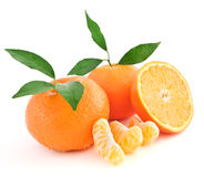 Tangerine oranges Royalty Free Stock Photo