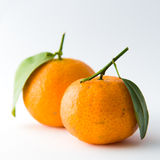 Tangerine Pair Royalty Free Stock Images