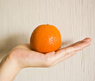 Tangerine. On a palm on a white background Royalty Free Stock Photo
