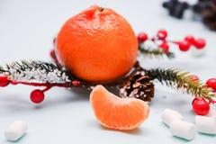 Tangerine ` s Нового Года Стоковое Изображение