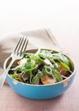 Tangerine salad with mixed lettuce Royalty Free Stock Image