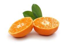 Tangerine-Scheibe stockbilder