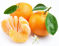 Tangerine with segments. On a white background Stock Image