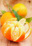 Tangerine with Segments Stock Photo