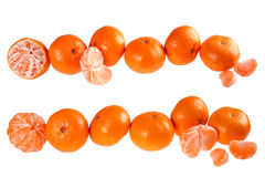 Tangerine set Stock Photos