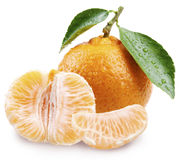 Tangerine with slices on a white background. Stock Image
