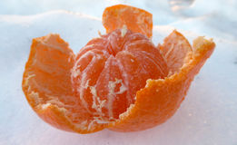 Tangerine on a snow Royalty Free Stock Images