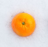 Tangerine on snow, top view Stock Photography